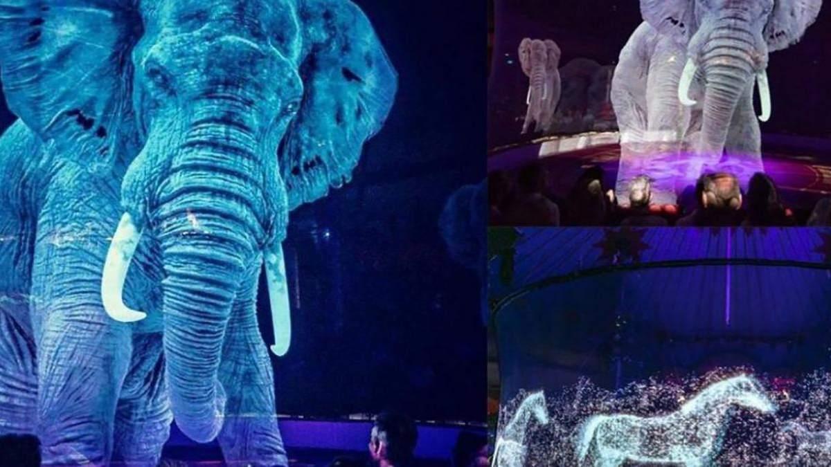 Жителів Вроцлава запрошують відвідати незвичний цирк