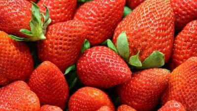 Недешеве задоволення: ціни на полуницю в Польщі 2021