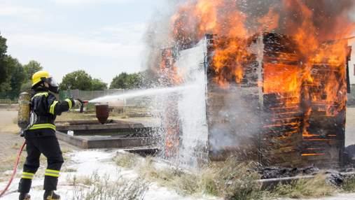 Пьяные украинцы подожгли птицеферму в Польше