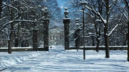 У Варшаві хочуть взимку запасати сніг на літо: чому це важливо